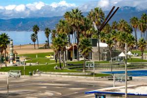 Venice Beach Fun-242-X3
